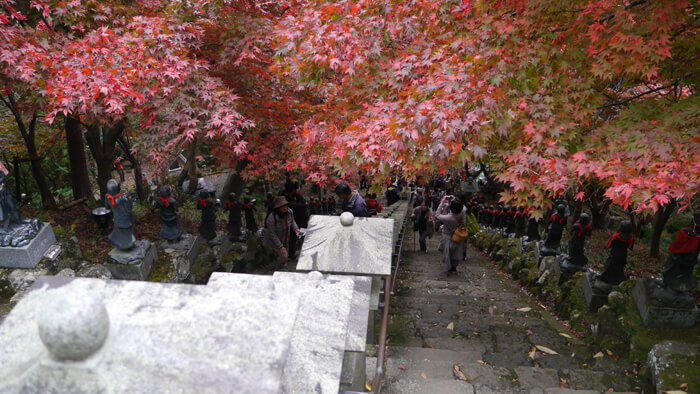 大山寺前の階段