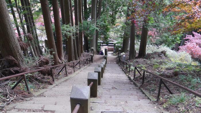 頂上登山口の階段