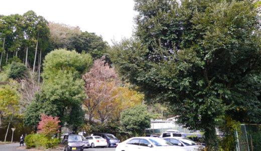 丹沢大山を登山するときの駐車場のおすすめは?混雑時のおすすめは?
