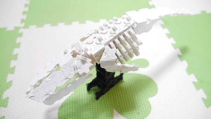 シロナガスクジラ骨格