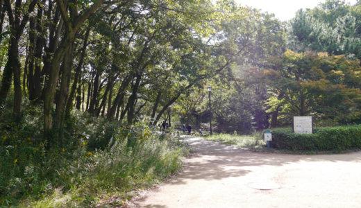 横浜のこども自然公園に行ってきた
